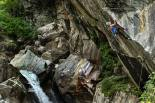 """Horny Trout"", Zillertal; credits: Jensen Walker"